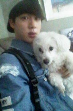 Seokjin, Bts Jin, Bts Bangtan Boy, K Pop, Bts Dogs, Les Bts, Bulletproof Boy Scouts, Worldwide Handsome, Namjin