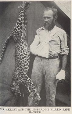carl akeley, master taxidermist and 'the leopard he killed bare-handed'.  Love the expression on his face.  Poachers; take note, if you must poach do it barehanded, without a knife or gun.