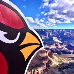 Arizona Cardinals and the Grand Canyon. Amazing! I ❤ #Arizona #BirdGang #AZLadyBirds #BeRedSeeRed #AZCardinals #ArizonaCardinals #NFL #ArizonaLadyBirds