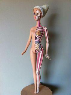 """""""Barbie Anatomy"""" by Jason Freeny_Barbie içi."""