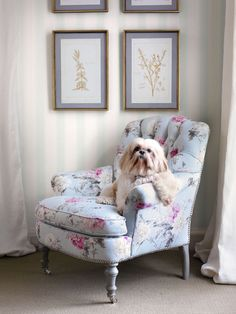 MeiShui loves her tufted chair! - Traditional Home®  Photo: Emily Followill Design: Lillian August