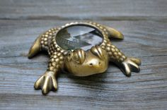 Vintage Frog Toad Magnifying Glass Paperweight by RevolutionMercantile on Etsy