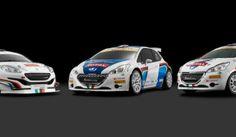 Peugeot Rally 2014: ecco le nuove livree per scrivere ancora la storia