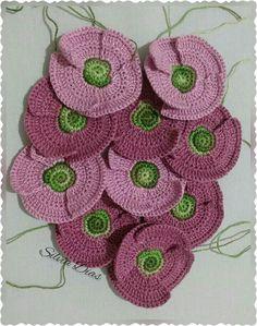 Flores...papoulas em rosa seco.