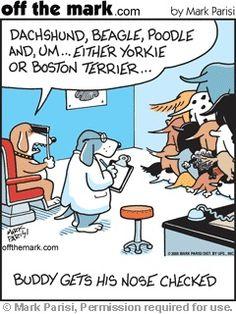 Dog nose test