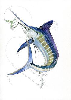 White Marlin Print Fish art Gamefish Fishing by FishArtCreations Swordfish Tattoo, Marlin Azul, Fish Under The Sea, Fish Artwork, Offshore Fishing, Pike Fishing, Fish Drawings, Color Pencil Art, Ocean Art