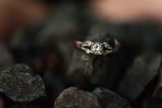 destination_wedding_photographer_artistic_emotional_documentary wedding_sighisoara_land of white deer Wedding Engagement, Engagement Session, Wedding Rings, Engagement Rings, Destination Wedding Photographer, Documentary, Deer, Artist, Jewelry