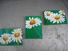 Shasta Daisies Set Of Three Original Paintings On Little Canvases. Original…
