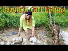 Beautiful Girl Fishing, Amazing Fishing at Pray Veng, Cambodia Tradition...