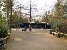 Freewheelers Cycle Centre at Longleat Forest