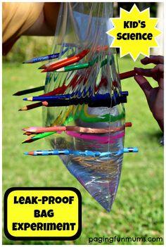 Sac en plastique percé de crayons - Leak Proof Bag Experiment for Kids #science #homeschool #preschool