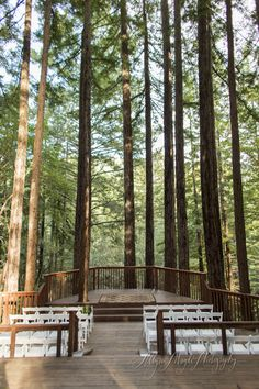 Amphitheatre of the Redwoods at Pema Osel Ling | Wedding and Events Venue | Santa Cruz, CA | Redwood Forest Wedding | Allyson Magda Photography