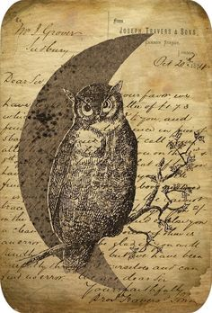 Owl Tags Antiqued Vintage Images Printable by DigitalAntiques