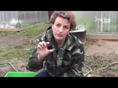 Как ухаживать за земляникой весной Чем подкормить землянику - YouTube