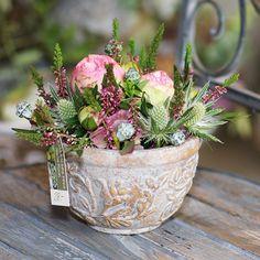 734152_441739532566090_372536456_n Montage, Floral Arrangements, Plants, Flowers, Christmas, Flower Arrangements, Planters, Bouquet, Plant