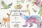 Animal Zone - watercolor animals - Illustrations - 2