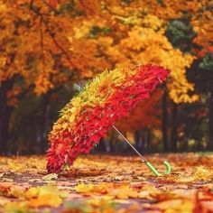 Autumn Umbrella by Christine Lovas October Country, Autumn Aesthetic, Seasons Of The Year, Autumn Photography, Fall Pictures, Fall Season, Fall Halloween, Beautiful World, Autumn Leaves
