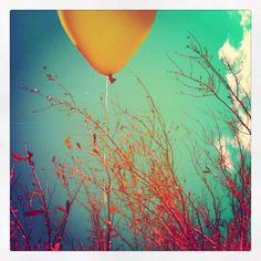 Another one from my balloons and nature series...enjoy!