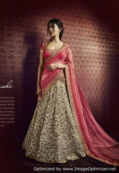 Beige Net Lehenga With All over Zari Bootis Embroidery 5063