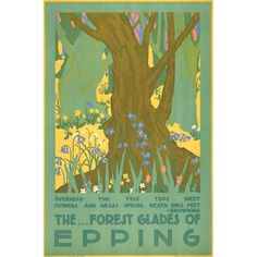 The forest glades of Epping - 1920 - (Edward McKnight Kauffer) Posters Uk, Railway Posters, Poster Prints, London Transport Museum, Public Transport, Epping Forest, British Travel, Old London, Vintage London