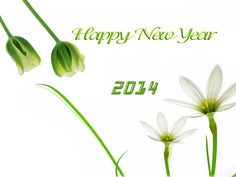 Kaysons Education----Cherish the flavor of New Year Celebrations