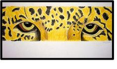 middle school art idea-eyes of an animal (acrylics or colored pencils?)