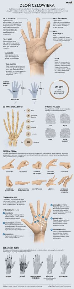 Body Anatomy, School Staff, Health Diet, Life Lessons, Diy And Crafts, Life Hacks, Infographic, Medical, Diy Projects