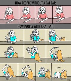 How People With A Cat Eat.