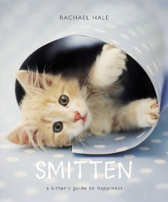 Smitten: A Kitten's Guide to Happiness by Rachael Hale,http://www.amazon.com/dp/0821258486/ref=cm_sw_r_pi_dp_gB.ytb0NQV3A9PV7