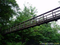 Cripple Creek Bridge on the Appalachian Trail