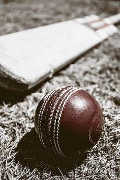 Tone vintage still-life photo of a worn red cricket ball and wood bat. Historical sports by Ryan Jorgensen