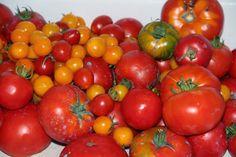 Godt og Sunt: Melkesyregjærede Tomater og Ratatouille