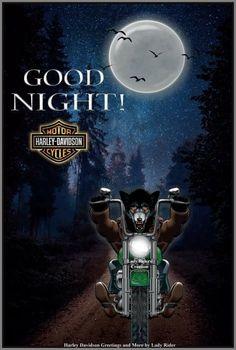 Harley Davidson Tattoos, Harley Davidson Pictures, Harley Davidson Logo, Harley Davidson Motorcycles, Motorcycle Logo, Motorcycle Travel, Good Morning Greetings, Good Morning Good Night, Steve Harley
