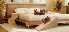 Puppy Stairs - Deluxe foam pet ramps & steps is supported by Doderslist see us on Dodgerslist http://www.dodgerslist.com/links.htm