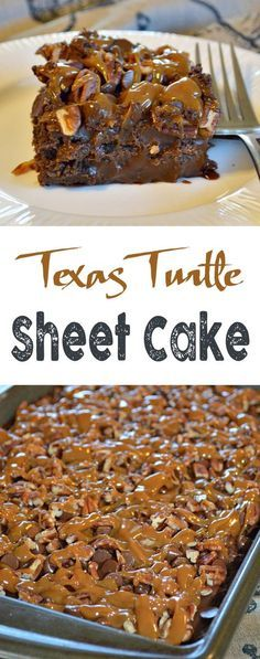 Texas Turtle Sheet Cake