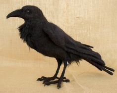 Edgar the Raven: Needle felted animal sculpture by The Woolen Wagon