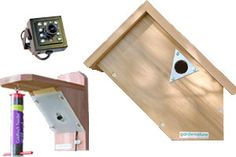Side view bird box & feeder cam system