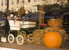 window display ideas for fall | Fall Window Displays | Recent Photos The ... | Dog grooming ideas and ...