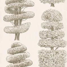 Linnaeus Gold (P557/04) - Designers Guild Wallpapers - Delicately drawn topiary trees with metallic highlights printed on smooth non-woven grounds. Showing in Gold - other colour ways available. Please request a sample for true colour match. Paste-the-wall product.
