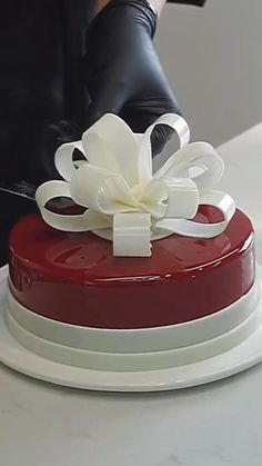 Cake Decorating Piping, Cake Decorating Designs, Cake Decorating Videos, Cake Decorating Techniques, Cake Designs, Chocolate Garnishes, Chocolate Mousse Cake, Cake Icing, Cake Mold