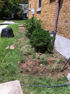South side flower bed in process
