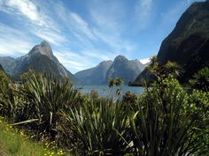 * MILFORD SOUND, NEW ZEALAND *  https://www.facebook.com/