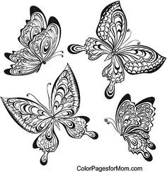 Butterfly Coloring Page 56