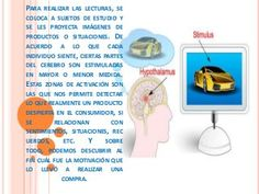 Neuromarketing diapositivas