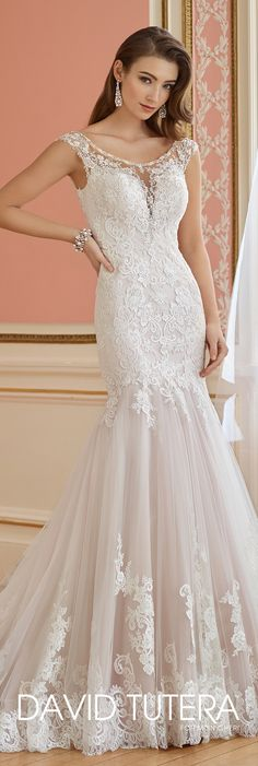 David Tutera for Mon Cheri Fall  2017 Collection - Style No. 217218 Margaret - lace and tulle trumpet wedding dress with cap sleeves and deep V-back with illusion lace trim