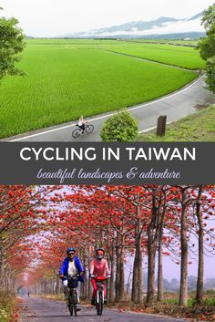 #discoverbooktravel Cycling in Taiwan #taiwan #taiwantravel #travel #asia #asiatravel #travelasia #cycling #sceniccyling
