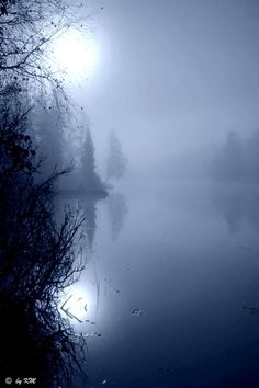 misty morning in Norway