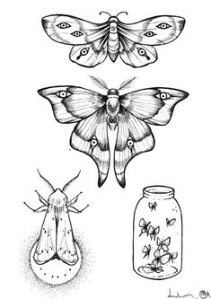 Moth Drawing, Butterfly Drawing, Tattoo Sketches, Tattoo Drawings, Art Sketches, Sketchbook Inspiration, Tattoo Inspiration, Mini Tattoos, Body Art Tattoos