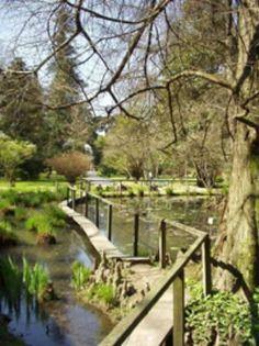 Photos of Orto Botanico di Lucca