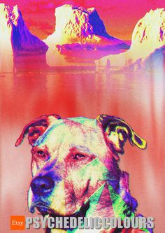 Arctic Dog Psychedelic Art Digital Print by PsychedelicColours